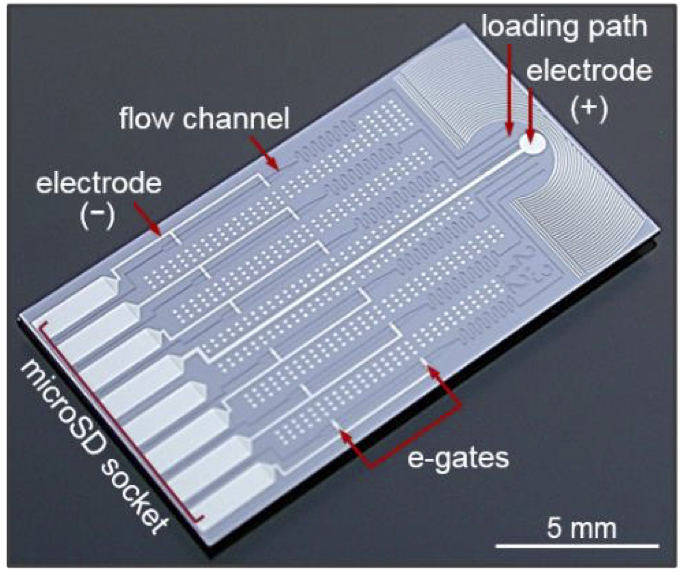 שבב מיקרופלואידי. צילום יחצ IBM