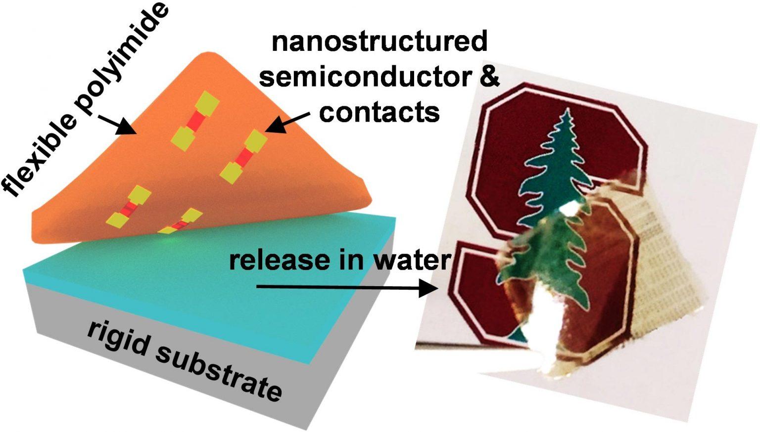 תיאור תהליך ההעברה עבור מוליך למחצה דו-מימדי ביחד עם מגעים ננו-מודפסים (משמאל) וצילום של מצע שקוף וגמיש עם המבנה שהועבר אליו (מימין) [באדיבות: Victoria Chen/Alwin Daus/Pop Lab]