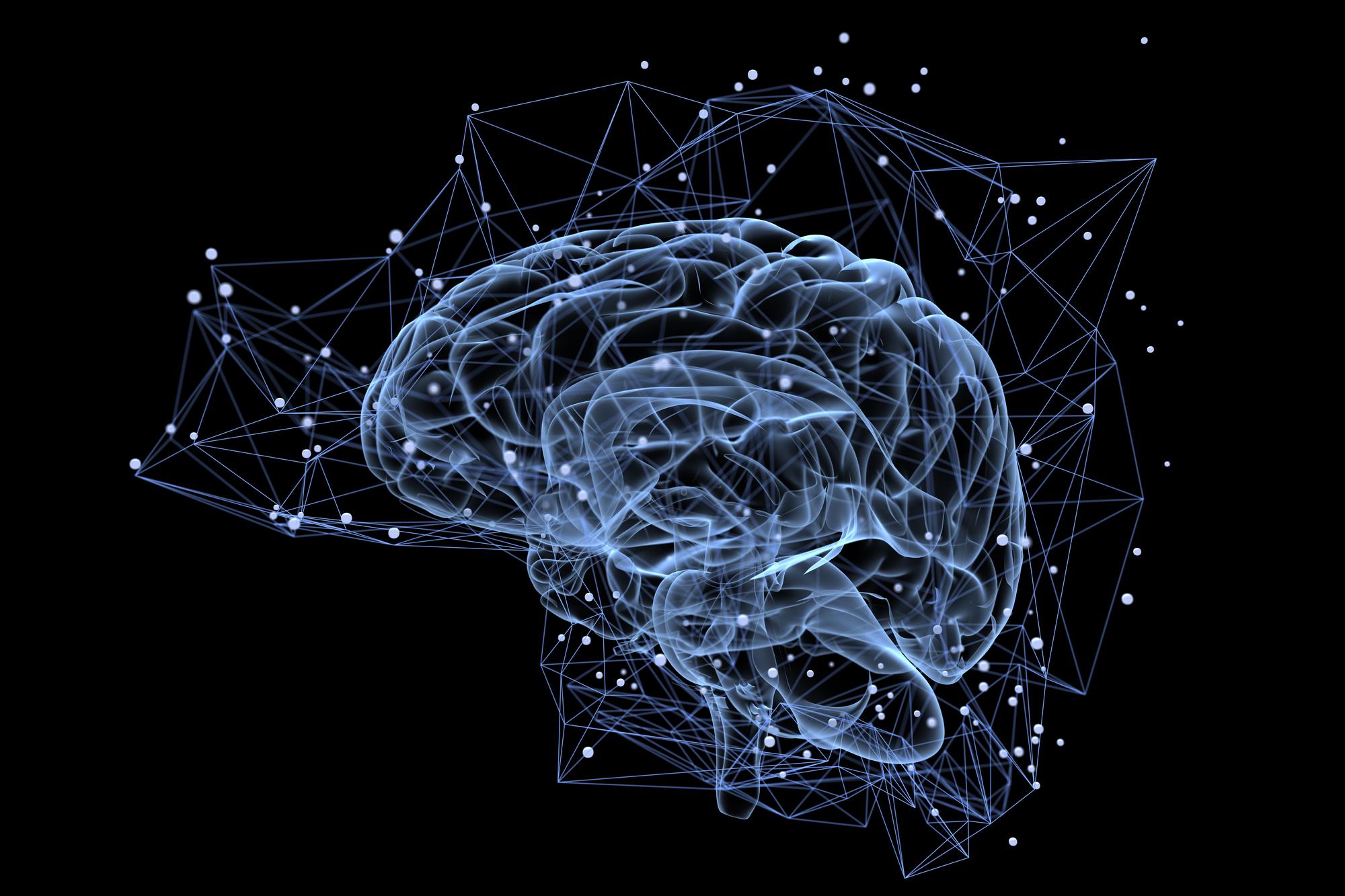 רשתות נוירונים במוח. אילוסטרציה: depositphotos.com